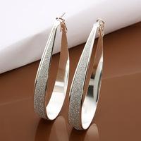 Zilveren ovale oorbellen